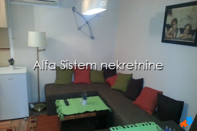 Stan,Jednosoban,Centar-Savski Venac,250 EUR