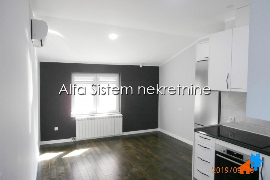 Rent, Banjica, House